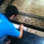 Spot cleaning a carpet for stains.