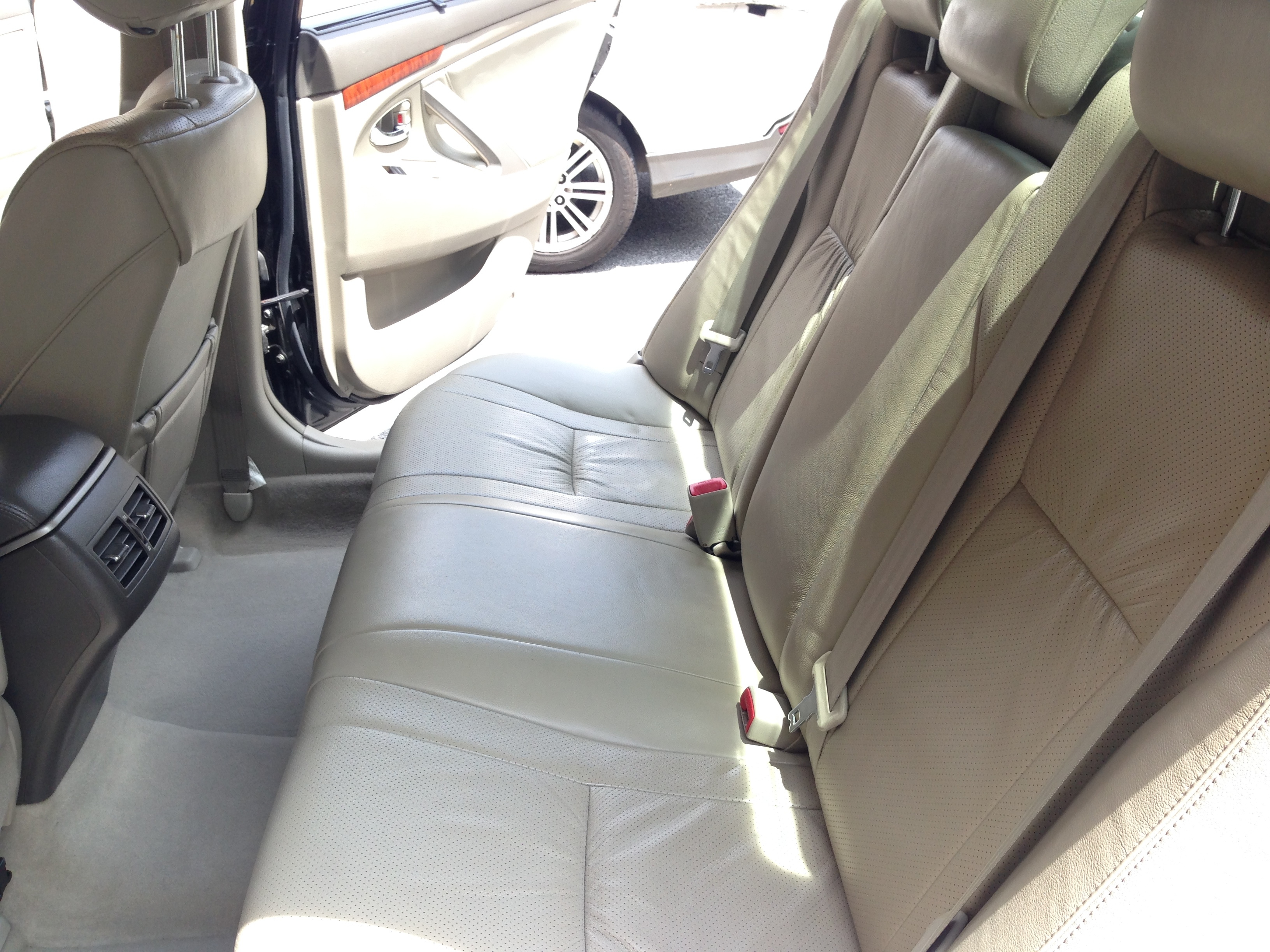 car mold 8 alphakleen professional carpet upholstery cleaning services kuala lumpur kl. Black Bedroom Furniture Sets. Home Design Ideas