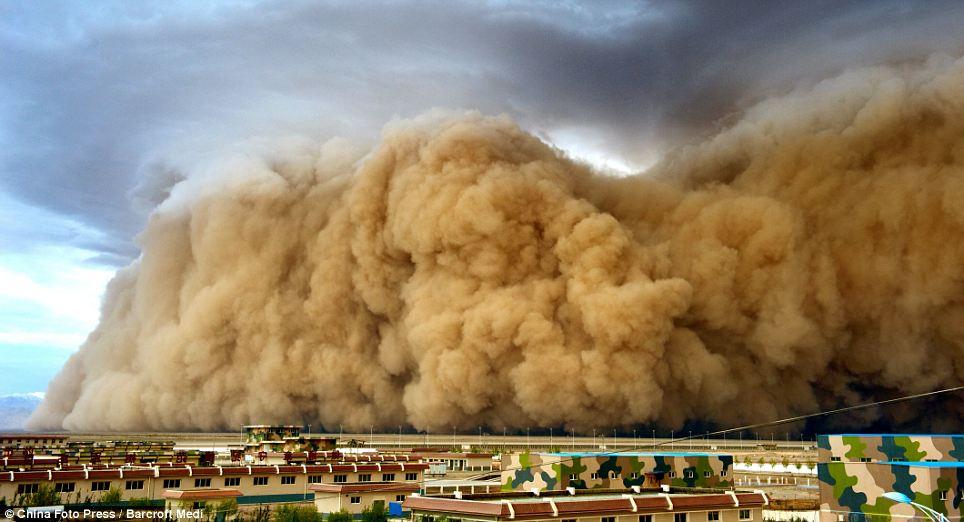 Dust Condo