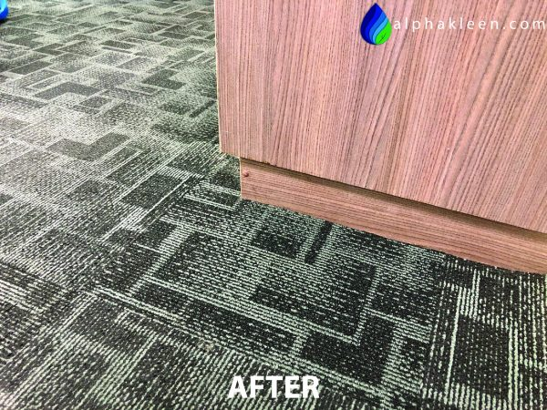Office Carpet Cleaning Mould After-01