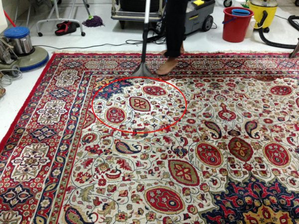 See the Difference In The Circled Area. The Result Is Guarantee & Works for All Carpets Including Handmade Persian Carpets As Shown.